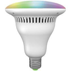 Rábalux - Smart bulb2 - 1502